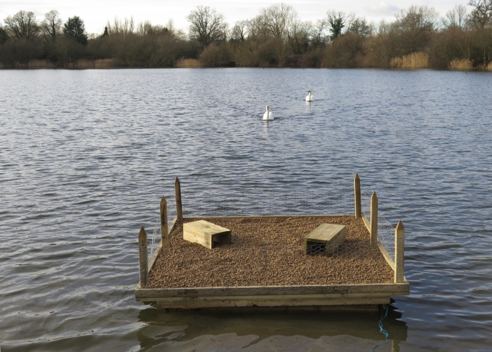 A tern raft - the boxes on top are to protect the chicks (c) Lucy Tomkinson